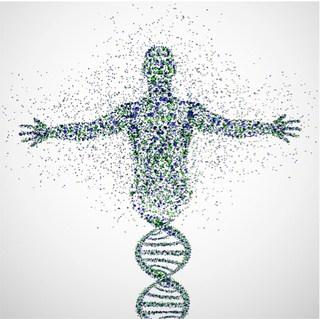 (Huid) VEROUDERING  met MEER dan 40% te beïnvloeden…maar hoe?