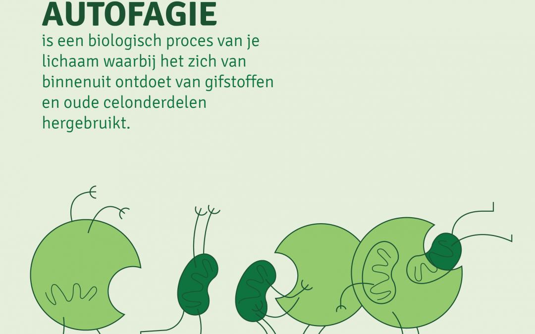Autofagie: Oude beschadigde cellen op ruimen, wat méér gezondheid, energie en jeugdige uitstraling meebrengt!